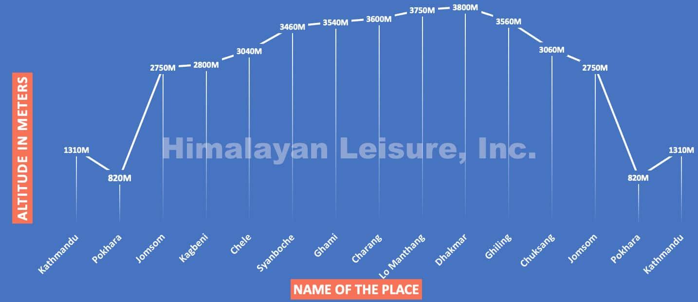 11upper mustang trek chart